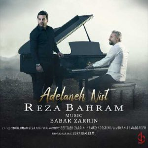 دانلود آهنگ جدید هم مسیر من از رضا بهرام